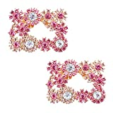 Duosheng & Elegant DH Clip di scarpe decorative rosa Strass Decorazioni di gioielli per sc...