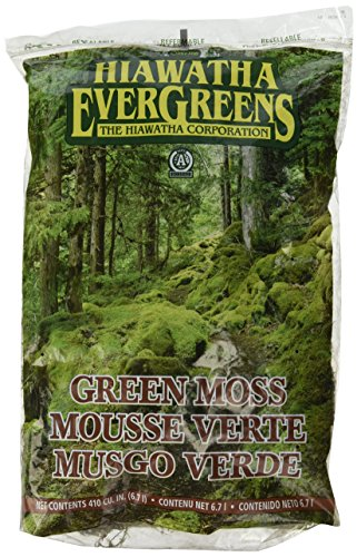 Hiawatha 100055137 Evergreens Green Decorator Moss in Resealable Bags 410cuin, 410 cu. in
