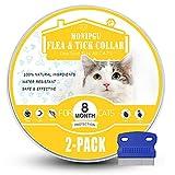 Cat Flea Collars - Best Reviews Guide