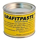 Fermit GmbH–Pasta grafite Nivo stagno (500G)