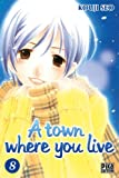 A town where you live T08