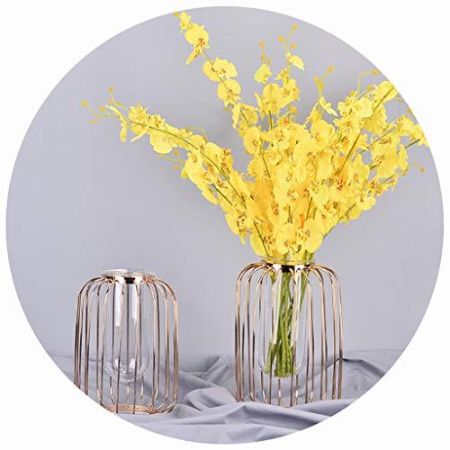 VNEIRW 3D Vasen Deko Hydroponische Glasvase Reagenzglas Hängevase mit Geometrische Metallgestell, Vintage Blumen Pflanze Dekorationen für Tischdeko Wohnzimmer Büro Party Hochzeit (Gold)