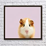 jzxjzx DIY Painting By Numbers Kits Hamster animal 40x50cm No frame Pictures painting by Numbers DIY Digital canvas home decor wall art