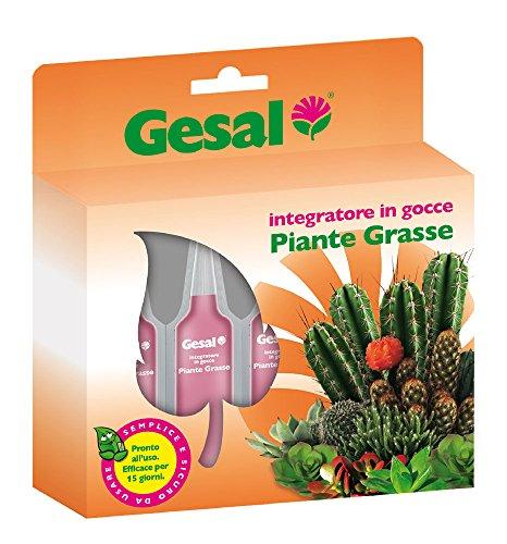GESAL Concimi Liquidi Piante Grasse, Rosa, 18.0x2.5x20.0 cm