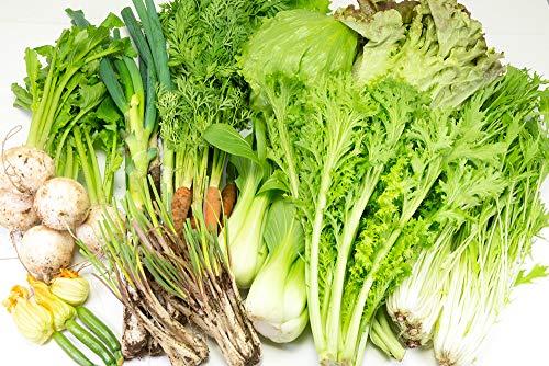 【クール冷蔵便】有機野菜BOX 有機JAS(千葉県 オーガニックすみだ農園) 無農薬野菜詰め合わせパック 産地直送 ふるさと21