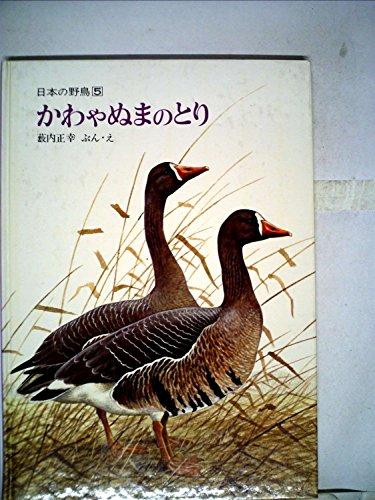 かわやぬまのとり (1979年) (日本の野鳥〈5〉)の詳細を見る