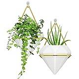 PHYLES macetas Colgantes, Maceta Pared decoración de Pared Adecuada para Plantas de Interior,...