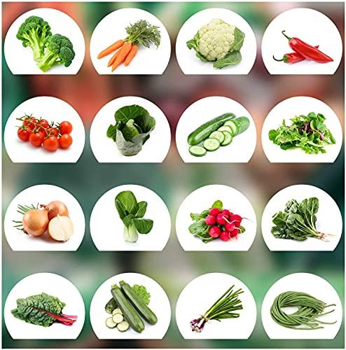 16 tipos de verduras, 25 semillas de cada vegetal, Muy fácil de cultivar Semillas de hortalizas con alta tasa de germinación,Conjunto de semillas de hortalizas-Una ración