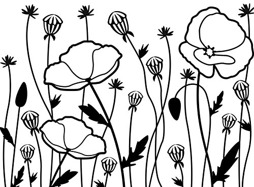 Darice Embossing Folder Cartella per Goffratura Mascherina Campo di Papaveri, 10.8x14.6x0.3 cm