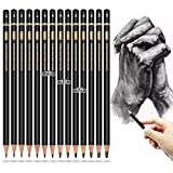 Professional Drawing Sketching Pencil Set - Brusarth 14 Pieces Art Drawing Graphite Pencils 12B, 10B, 8B, 6B×2,4B×2,2B×2,B, HB, 2H, 4H, 6H, Sketching, Shading for Beginners & Pro Artists