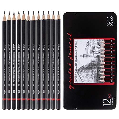Professional Drawing Sketch Pencils Set of 12, Medium (8B - 2H), Ideal for Drawing Art, Sketching, Shading, Artist Pencils for Beginners & Pro Artists