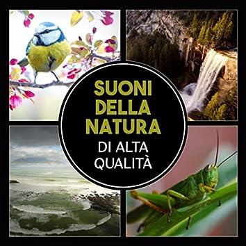 Suoni della natura di alta qualità (Relax e meditazione con suoni di onde, Foreste, Piogge e giardino zen)