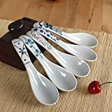 sknonr Pintado a Mano de la manija de la Porcelana China de la Flor de cucharas Sopa/asiático del arroz Cuchara Vajilla for Aperitivos Conjunto de 5