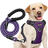 tobeDRI No Pull Dog Harness Adjustable Reflective Oxford Easy Control Medium Large Dog Harness with A Free Heavy Duty 5ft Dog Leash (M (Neck: 14.5'-20.5', Chest: 22'-28'), Purple Harness+Leash)