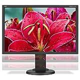 NEC E245WMI-BK 24' Screen LED-Lit Monitor