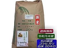 令和元年産 石川県産 加賀百万石 厳選 コシヒカリ 白米 20kg