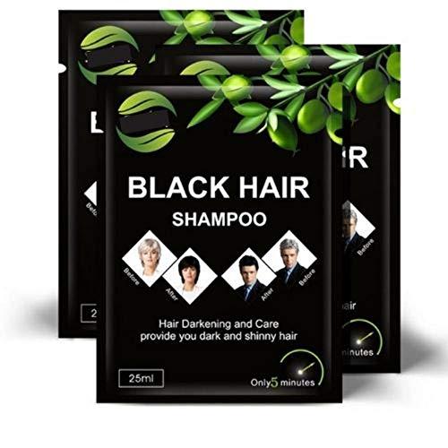 WELL4U - Black Hair Shampoo - Shampoo gegen graue Haare - Schwarzes Haarshampoo zur Grauabdeckung - Ist Ihre natürliche Haarfarbe schwarz? Möchten sie Ihre schwarze Haarfarbe zurück? Graue Haare, nee!