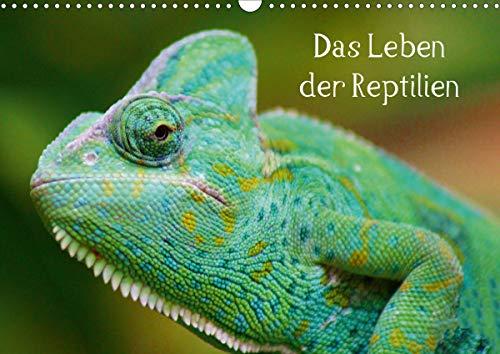 Das Leben der Reptilien (Wandkalender 2021 DIN A3 quer)