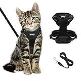 BingPET - Arnés y correa para gato negro a prueba de fugas, ajustable, suave y reflectante, diseño sin tirar, para caminar y correr con pequeñas mascotas