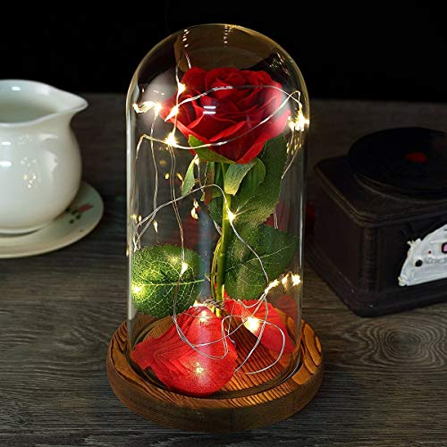 Beauty and the Beast Rose,Red Silk Rose Flower with Fallen Petals in a Glass,with Exquisite Gift Box for Anniversary Mother Day Holiday Birthday Party
