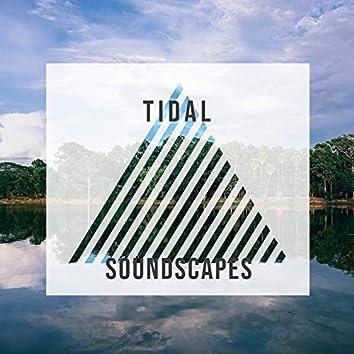Healing Tidal Soundscapes