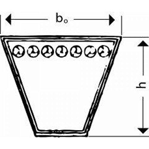 Keilriemen BX//X 17 x 750 Li = BX 29,5 formgezahnt versandfrei