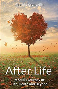 Paperback After Life: A Soul's Journey of Life, Death and Beyond Book