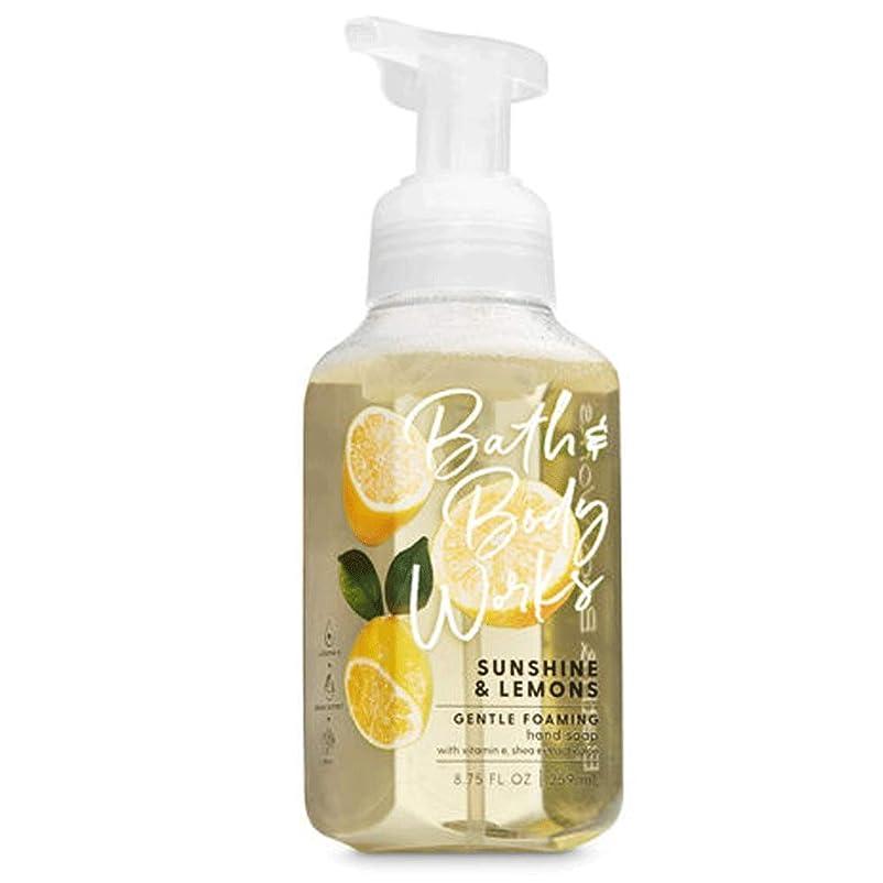 リークルビー真空バス&ボディワークス サンシャインレモン ジェントル フォーミング ハンドソープ Sunshine & Lemons Gentle Foaming Hand Soap