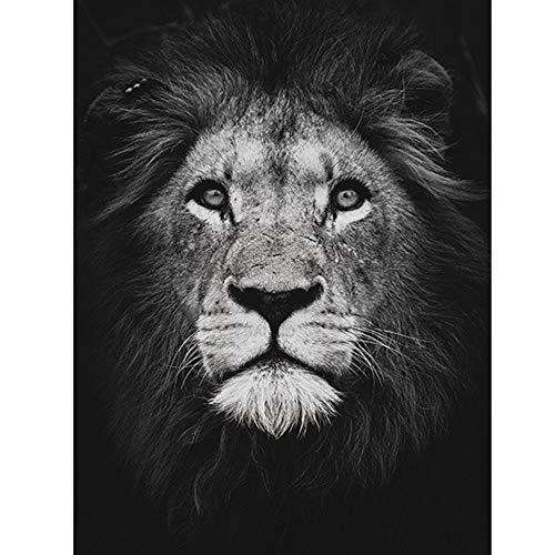 Swlyddm Kit de pintura de diamante 5D por número, León animal negro...