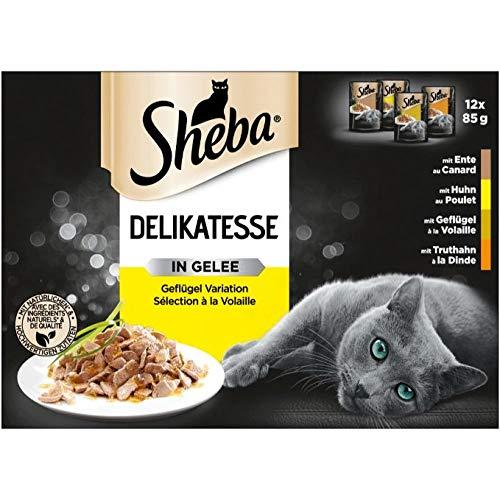 Sheba Delikatesse in Gelee – Katzen Nassfutter mit feiner Geflügelauswahl