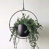 UMYMAYDO1 Macetero colgante de metal decorativo para techo, cesta de clorofíto, para plantas de interior, exterior, terraza, porche, balcón (negro-A)