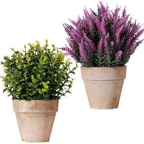 FagusHome Plantas Artificiales en Macetas 2 Piezas Plantas de Eucalipto Rosemary Plants Artificiales de Lavanda en Macetas Plástico para Decoración (A)