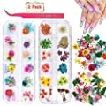 2 Boxes Nail Art Dried Flowers,UNIME 24 Colors Dry Flowers Mini Real Natural Flowers Nail Art Supplies 3D Applique Nail Decoration Sticker for Tips Manicure Decor Accessories,Gypsophila Flowers Leaves