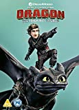 How To Train Your Dragon 3 - The Hidden World [Edizione: Regno Unito] [Italia] [DVD]