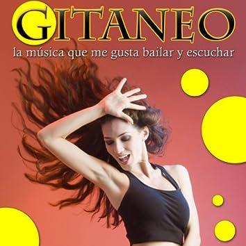 Gitaneo, La Música Que Me Gusta Bailar y Escuchar