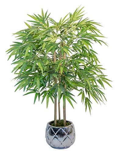 Maia Shop Bambú Cañas Naturales, Elaborados con los Mejores Materiales, Ideal para Decoración de hogar, Árbol, Planta Artificial (105 cm)