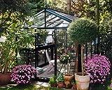 Exaco Royal Victorian VI 36 Greenhouse