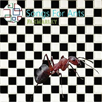 Songs for Ants