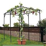 NYDCTHOM Pérgola Carpa Cenador de Jardín Porche Patio Terraza de Aspecto Estructuras Hierro Decoración Exterior,Soporte Ideal para Plantas de Escalada y Flores