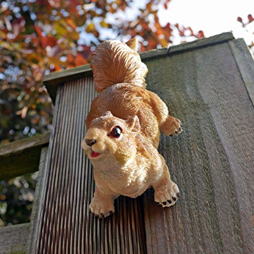 Ablerhome Decoration Climbing Red Squirrel Garden Sculpture Resin Fence Wall Hanging Animal Ornament NEW Gift (Red Squirrel) (Climbing Red Squirrel)