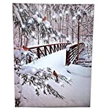 BANBERRY DESIGNS Cardinal Snowy Bridge Canvas Wall Art - Lighted Print Red Cardinals Outside Winter Woods Scene - Battery Operated Light Up Christmas Pictures