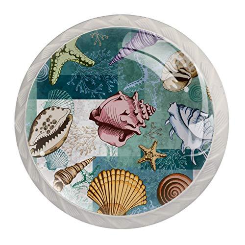Tirador para cajón de 1,18 pulgadas, transparente para cocina, conchas de mar y estrellas de mar, 4 unidades