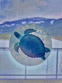 Retractable Screen Door Decals  Stickers  - 6 per Package - Keep Children Safe - Alert Birds Dogs Kids - Warn Protect Window Safety - Sea Turtles