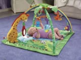Fisher-Price Rainforest Melodies & Lights Deluxe Gym (Includes 4-pk Energizer C Batteries)