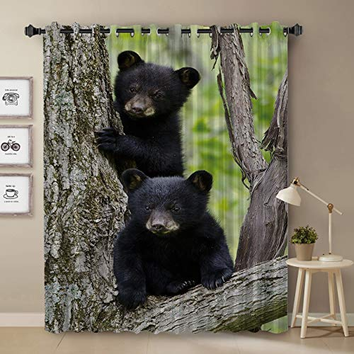 Black Bear Curtain, Cubs Family Theme Rustic Wildlife Design Curtain for Bedroom, Room Darkening Blackout Curtain for Living Room Thermal Insulated with Grommet Window Curtain, 52 by 63 Inch