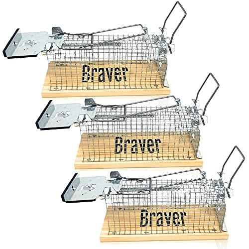 Braver DE® Mausefalle Lebend im 3er Set für Innen & Außen, Schaumstoffgeschützte Tür & 2 Transportgriffe, Inkl. Ebook mit Fang & Köder Tipps, Lebendfallen mäuse, Lebendfalle maus
