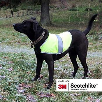 Salzmann 3M Manteau pour Chien Réfléchissant | Fabriqué avec 3M Scotchlite | Gilet de Sécurité pour Chien de Haute visibilité | Taille M
