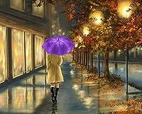 DGSJH 番号によるDiy5Dダイヤモンド絵画キットクロスステッチ絵画フルラウンドドリルラインストーンCsモザイクアート写真刺繡アートクラフトリビングルーム装飾女性公園の夜40X50Cm