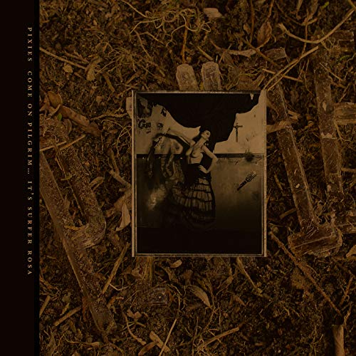 Come on Pilgrim-It'S Surfer Rosa