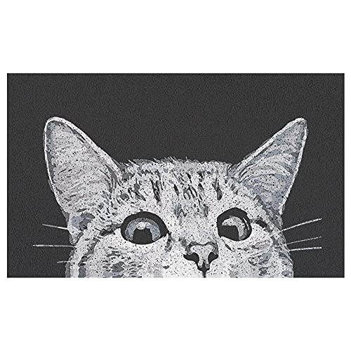 MR FANTASY Cat Front Door Mat Outdoor Mud Absorbent, Welcome Mat for Indoor & Outdoor, Doormat Entrance Mat Rug Outside Patio/Inside Entry Way, Anti-Slip Mats Rubber Backing, Durable & Washable, 18x30